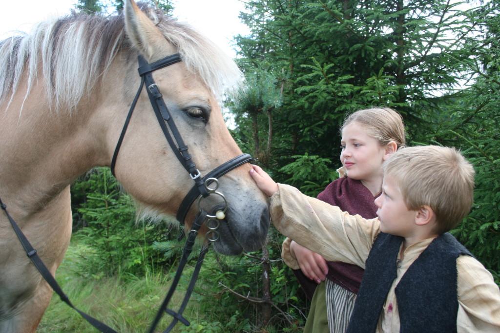 Hest og rytter på plass!